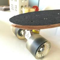Small-skate